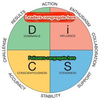 DISC Profile of leaders